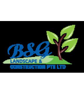 BSG Services Pte Ltd