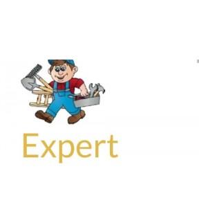 Expert Handyman SG