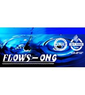 Flows Ong Pte Ltd