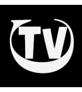 The Video Company