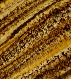 Aureate Bronze Translucent Polished Onyx Feature Wall